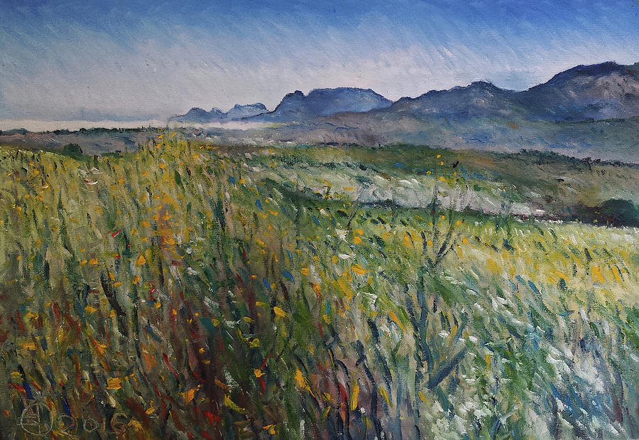 Oil On Canvas Painting - Early Morning Fog In The Foothills Of The Overberg Range Of Mountains Near Heidelberg South Africa. by Enver Larney