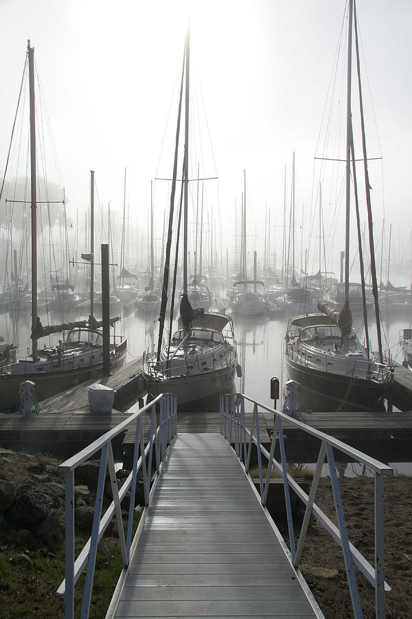 Sailboats Photograph - Early Morning On The Docks by Laurie With