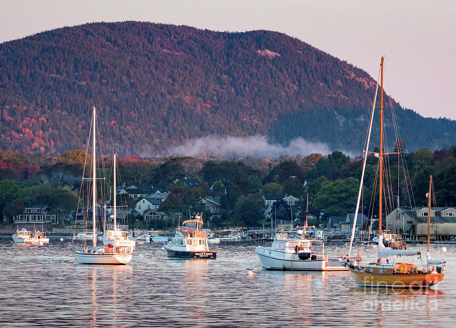 Early Morning, Southwest Harbor, Maine #32416 by John Bald