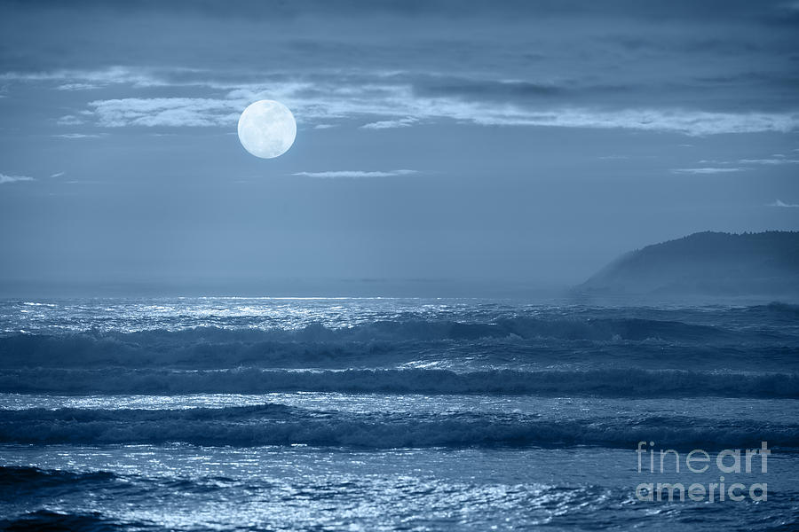 Moon Photograph - Early  Morning Splendor by Sandra Bronstein