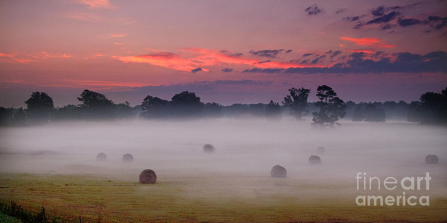 Early Morning Sunrise on the Natchez Trace Parkway in Mississippi by T Lowry Wilson