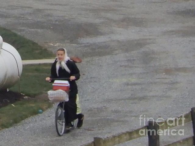 Amish Photograph - Early Morning Trek To School by Christine Clark
