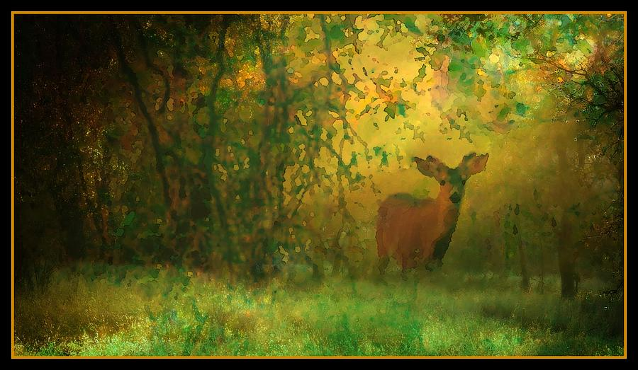 Early Morning Visitor by Sherri Meyer