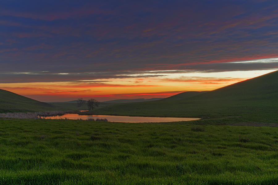 Early Rise by Bruce Bottomley
