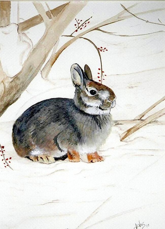 Rabbit Painting - Early Snow by Debra Sandstrom