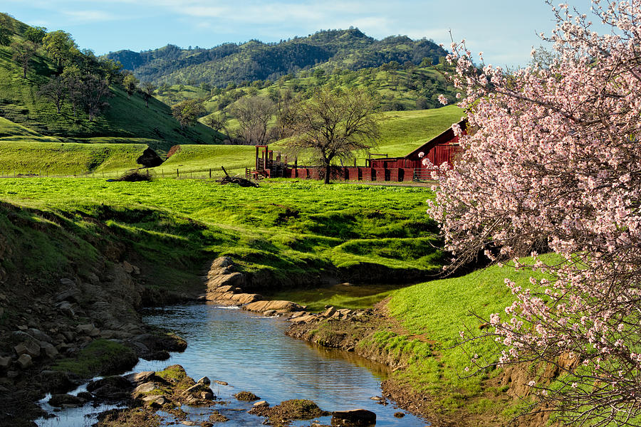 Farm Photograph - Early Spring In The Valley by Kathleen Bishop