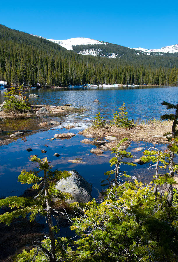 Finch Lake Photograph - Early Summer At Finch Lake by Cascade Colors