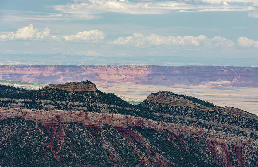 East Kaibab Monocline by Gaelyn Olmsted