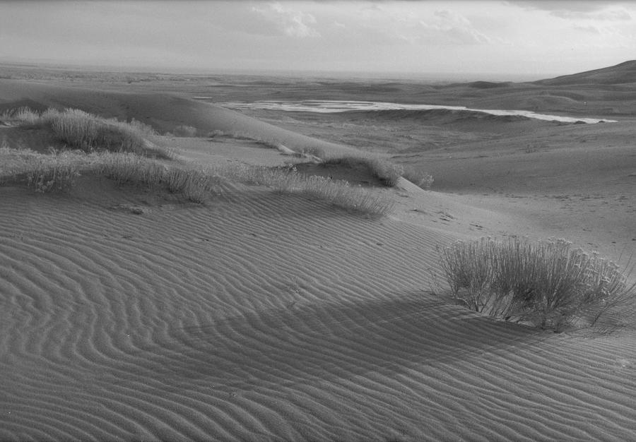Sand Photograph - East Of Medano by Allan McConnell