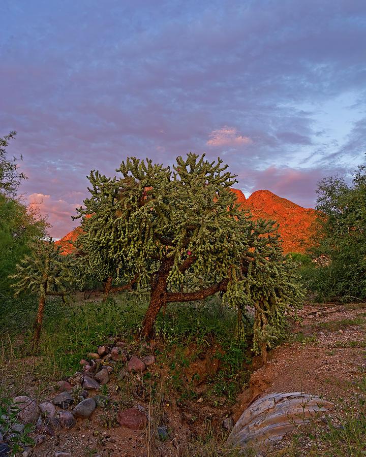 East Of Sunset V30 Photograph