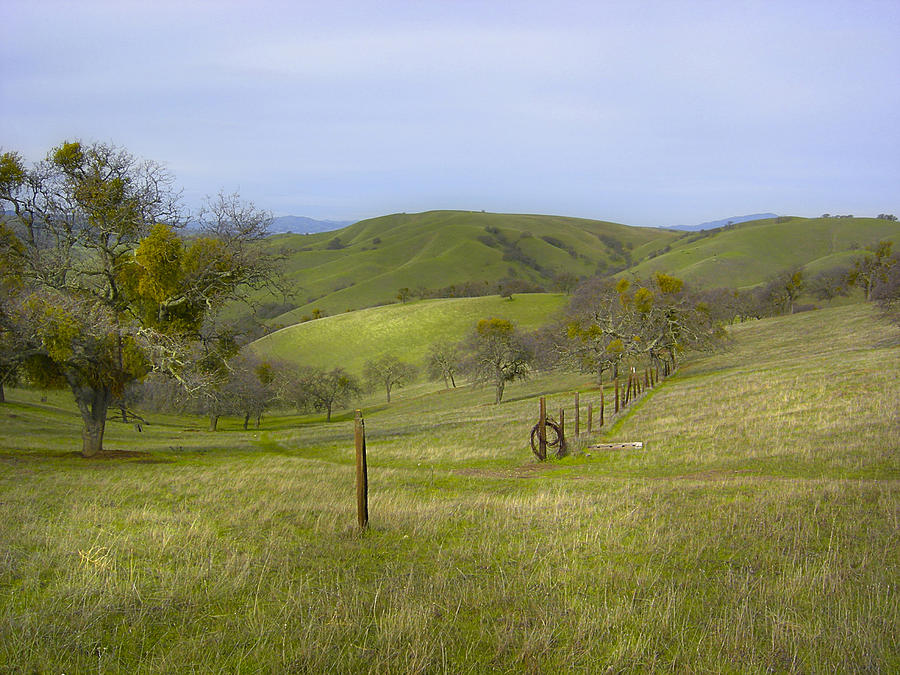 Landscape Photograph - East Ridge Trail Barbed Wire by Karen  W Meyer