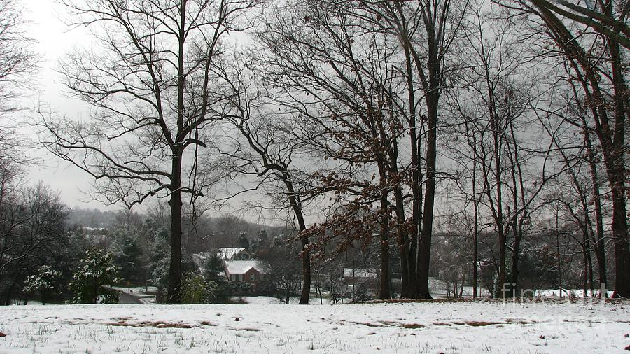 Landscape Photograph - East Tennessee Winter by Todd A Blanchard