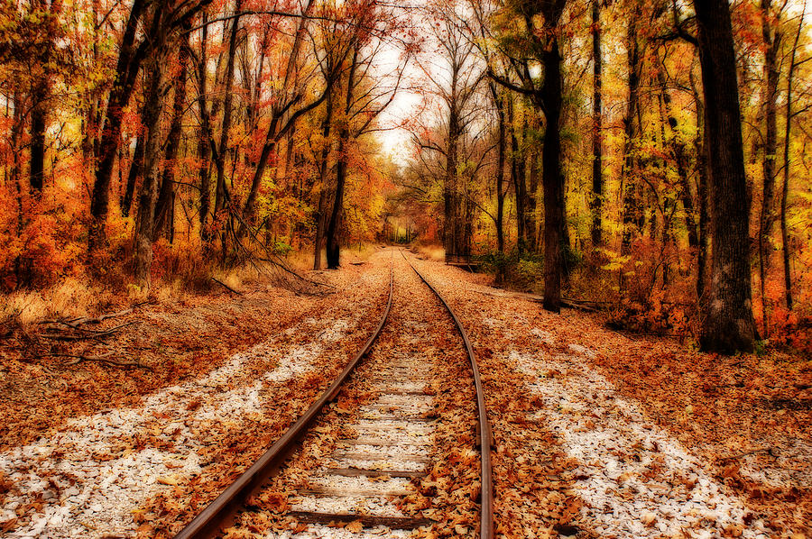 Scenery Photograph - Eastbound by Sandy Keeton