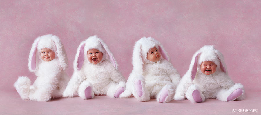 Bunny Photograph - Easter Bunnies by Anne Geddes