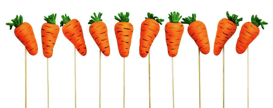 Easter Carrots Photograph
