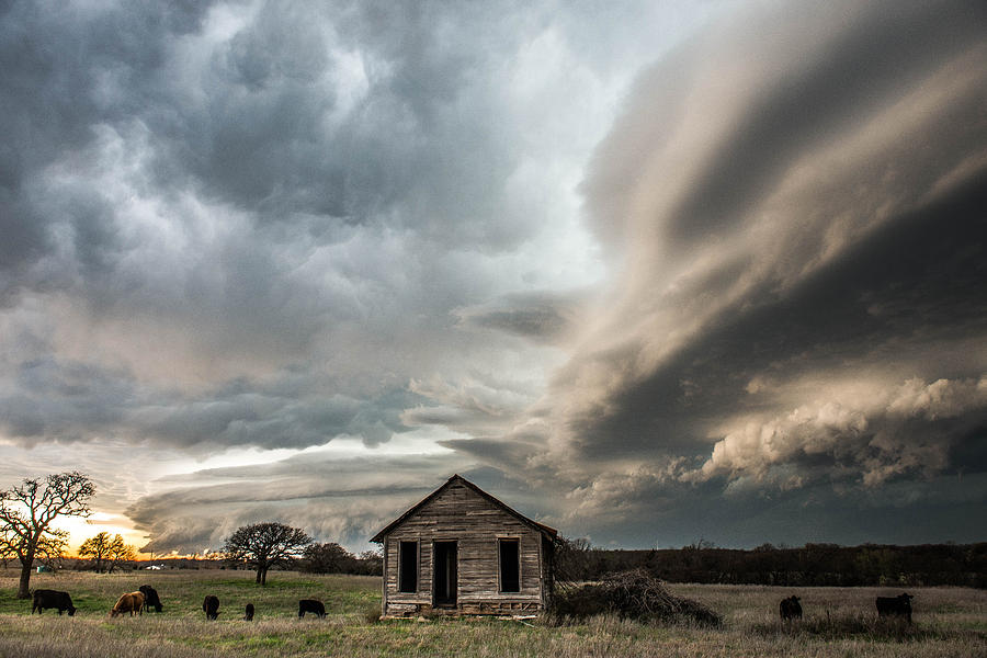 Eastern Oklahoma Beauty by Marcus Hustedde