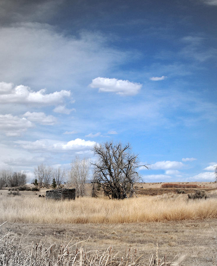Eastern Plains of Colorado by Margaret Fortunato