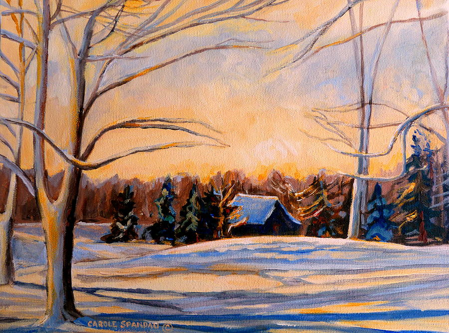 Montreal Painting - Eastern Townships In Winter by Carole Spandau