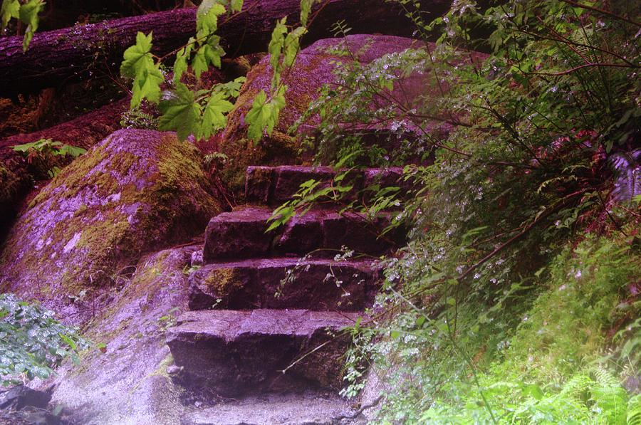 Stairs Photograph - Easy Steps  by Jeff Swan