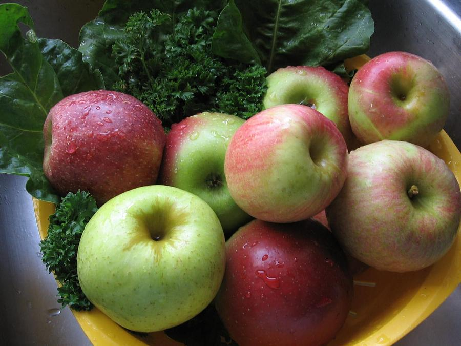 Eat Healthy Stay Healthy by Deb Martin-Webster