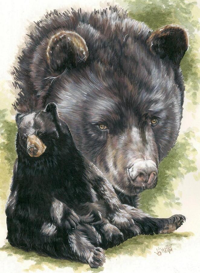 Black Bear Mixed Media - Ebony by Barbara Keith