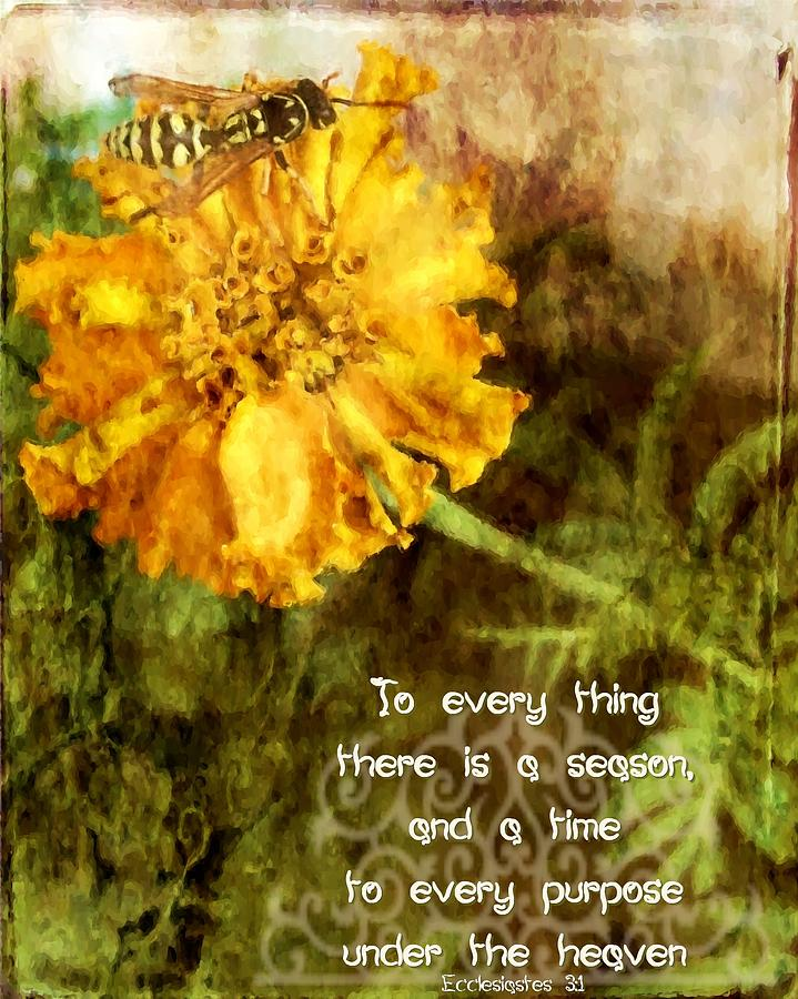 Jesus Digital Art - Ecclesiastes 3 1 by Michelle Greene Wheeler