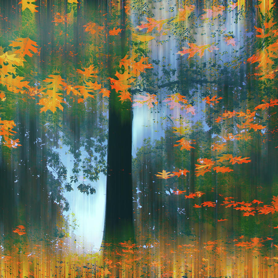 Autumn Photograph - Echoes Of Autumn by Jessica Jenney