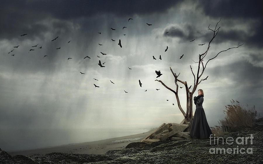 Echoes Of Despair Photograph