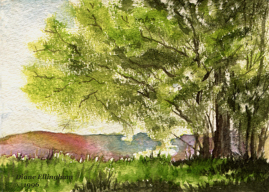Nature Painting - Echoes Of Summer by Diane Ellingham