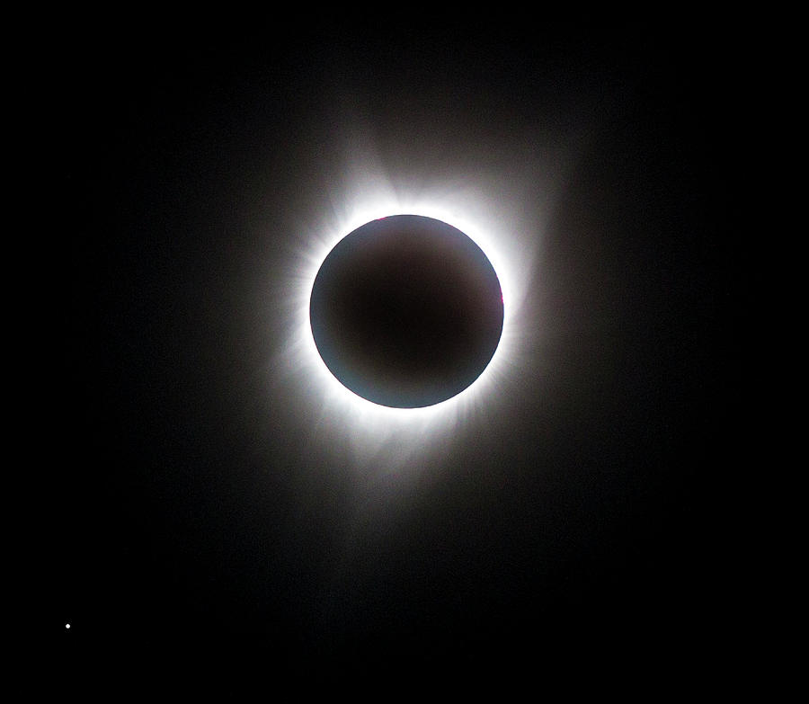 Total Eclipse Photograph - Eclipse Corona by Kent Duryee