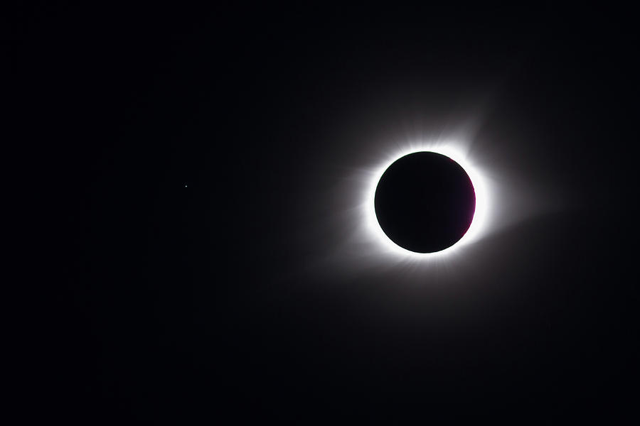 Eclipse Totality And Regulus Photograph