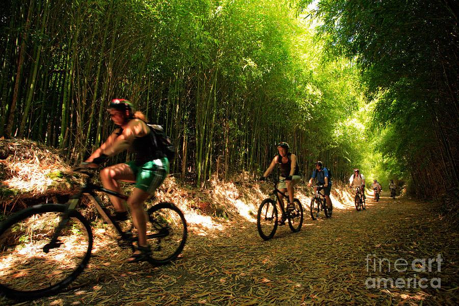 Biking Photograph - Eco-tourism by Gaspar Avila