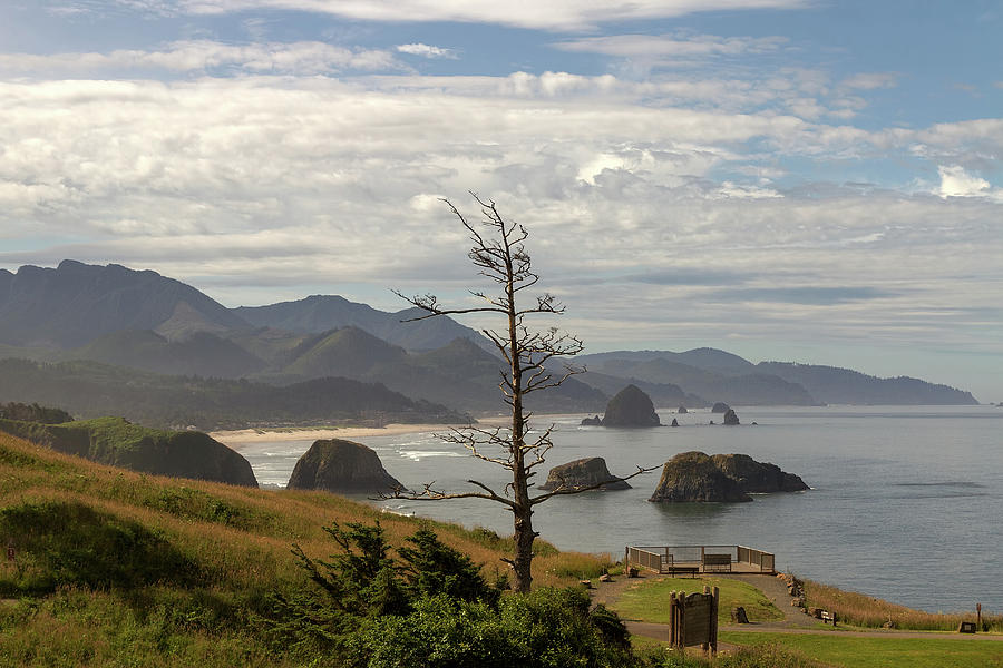 Haystack Rock Photograph - Ecola State Park by David Gn