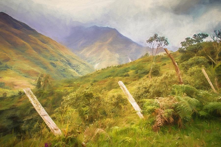 Ecuadorian Mountain Forest by Janice Bennett