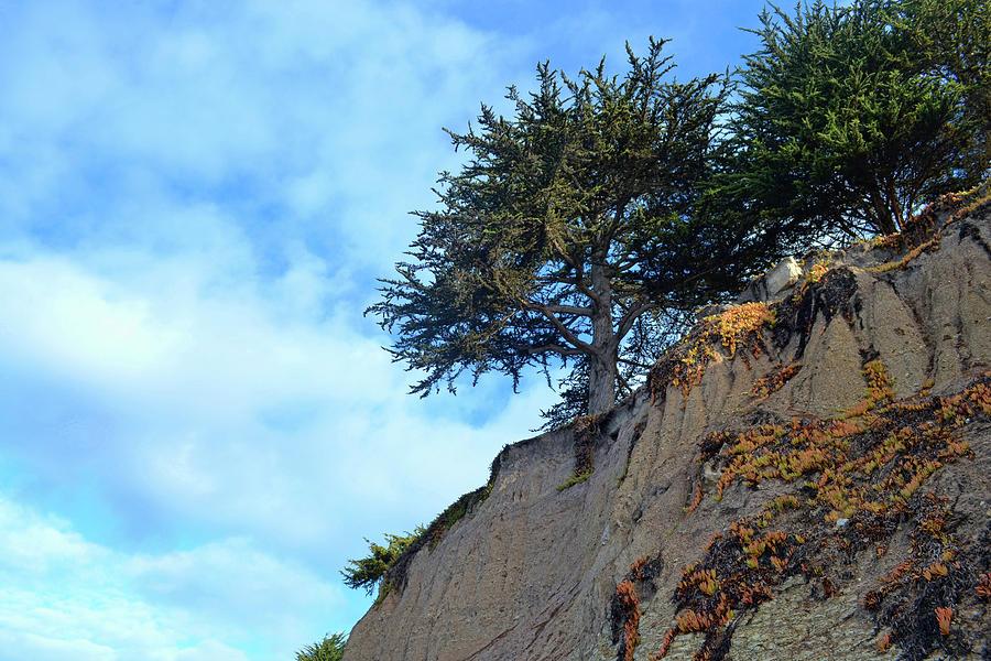California Photograph - Edge Of The Beach by JAMART Photography