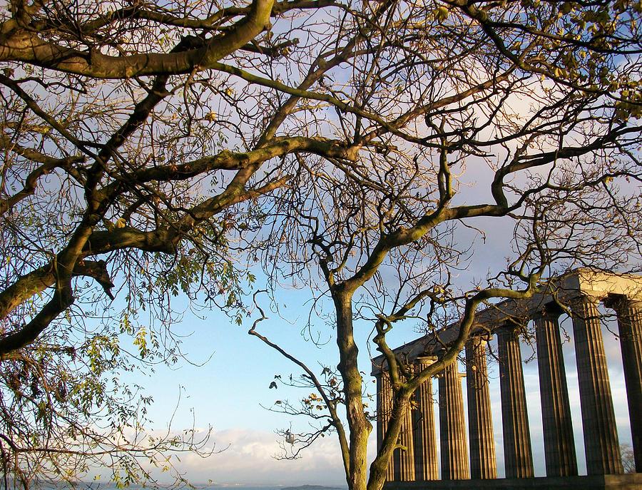 Scotland Photograph - Edinburgh - Caption Hill Trees by Munir Alawi