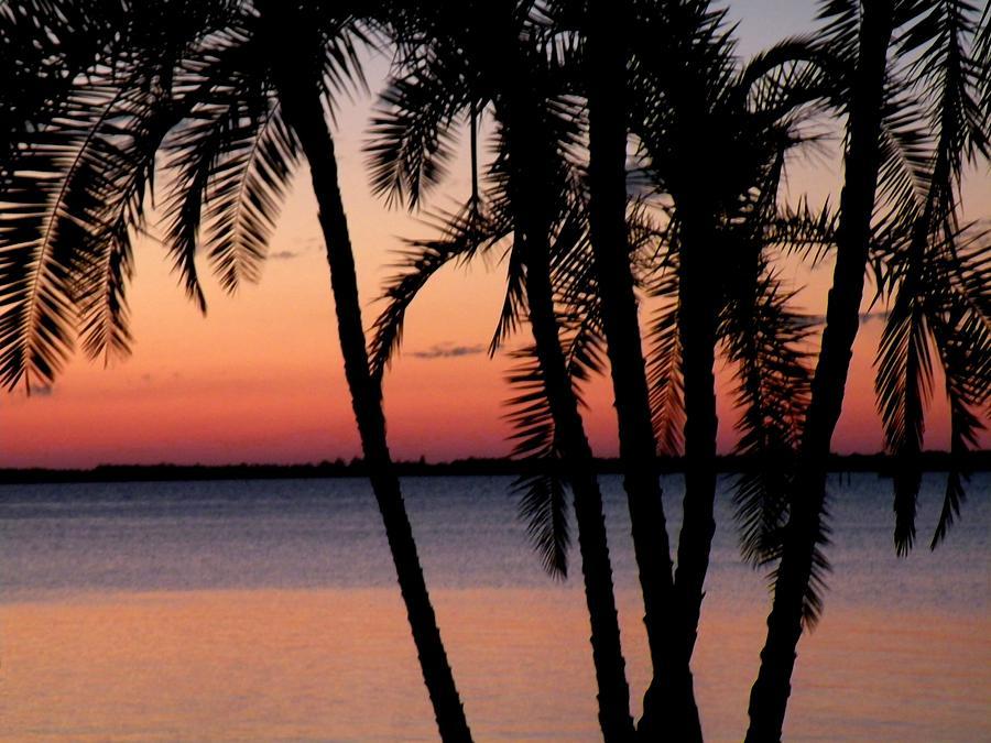 Sunset Photograph - Edison Sunset by Rosalie Scanlon