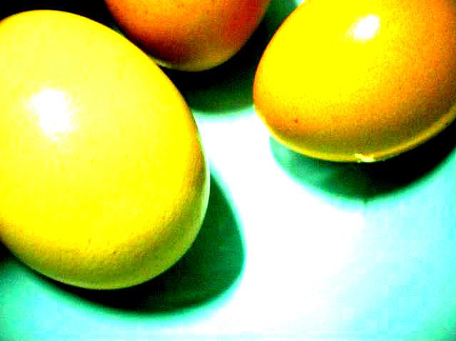 Egg 2 Photograph by Julia  Chamberlain