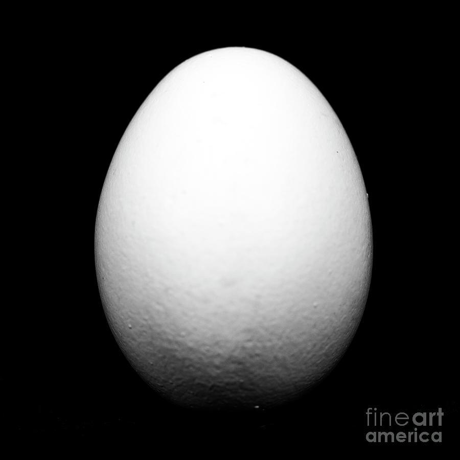 Egg Photograph - Egg by John Rizzuto