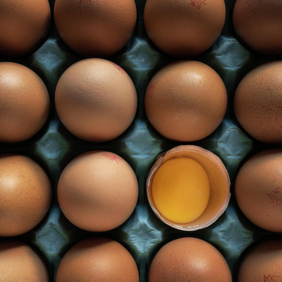 Egg Photograph - Egg Stravaganza by Phillips and Phillips