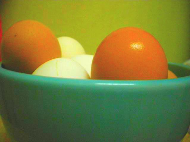 Eggs 6 Photograph by Julia  Chamberlain