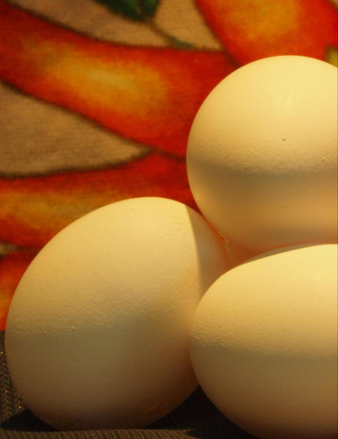 Eggs Photograph - Eggs Tres by Irma BACKELANT GALLERIES