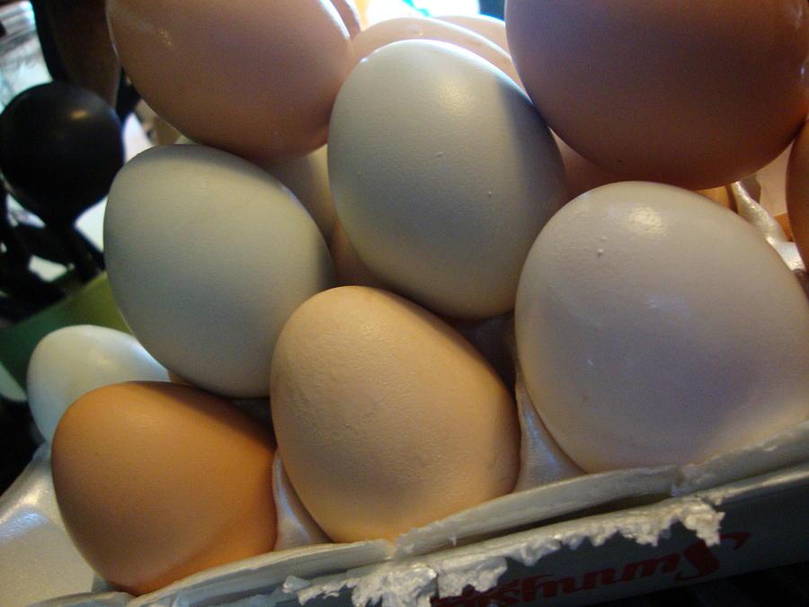Eggs8 Photograph by Stephanie Huber