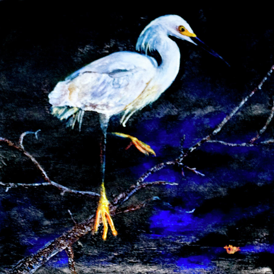 Bird Painting - Egrets...ive Had A Few by Terry R MacDonald