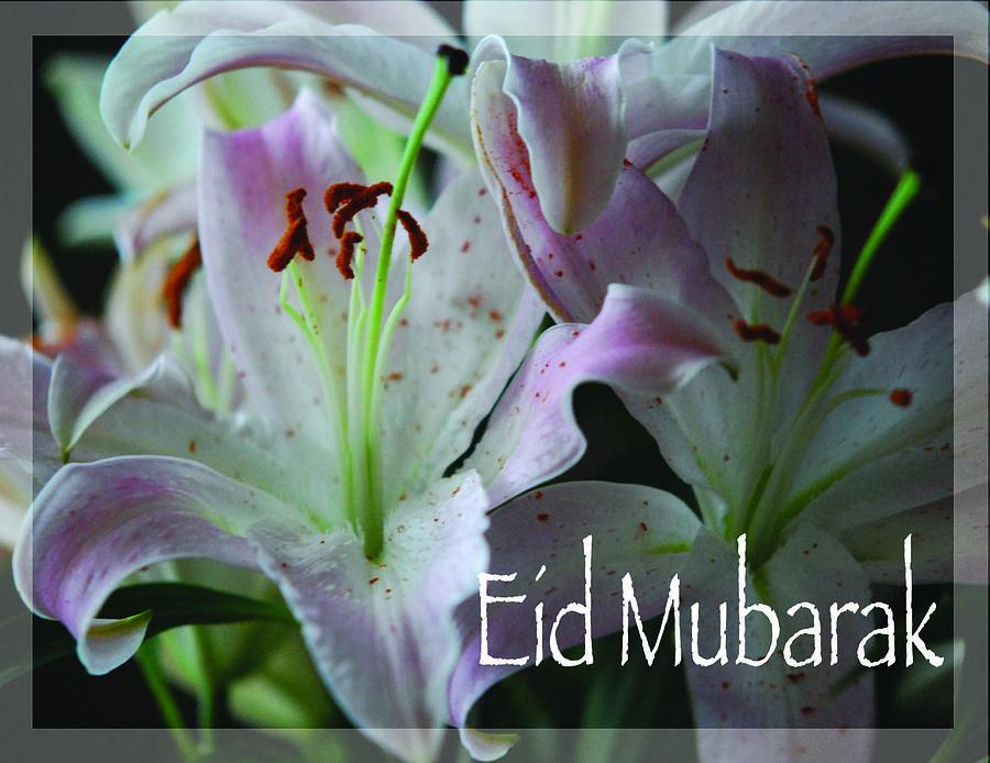 Muslim Greeting Card - Eid Mubarak by Sharon Elliott