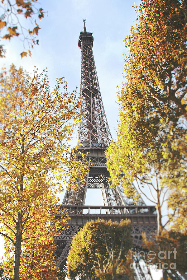 Eiffel tower amidst the autumn foliage by Ivy Ho