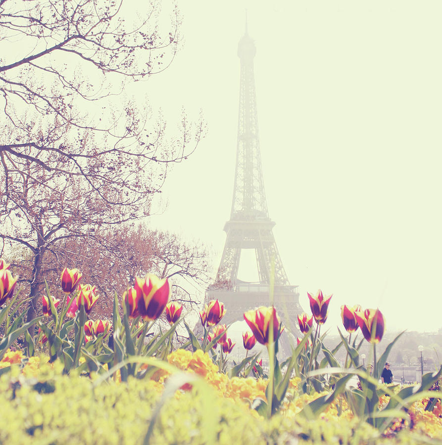 Vertical Photograph - Eiffel Tower With Tulips by Gabriela D Costa