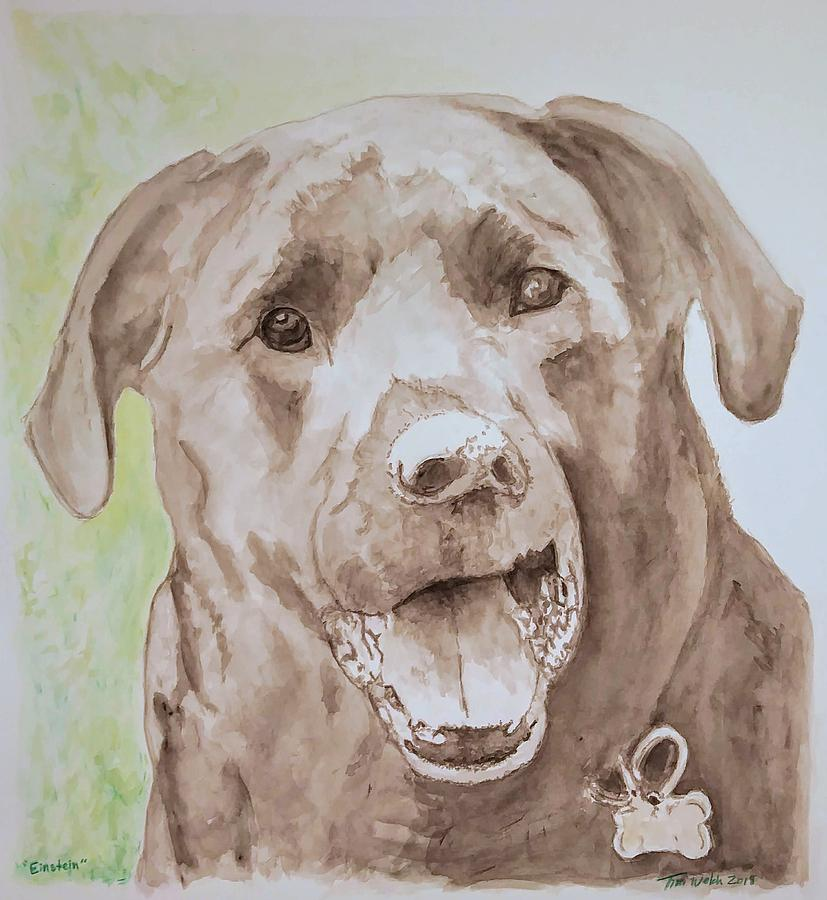 Dogs Painting - Einstein The Lab by Tim Welch