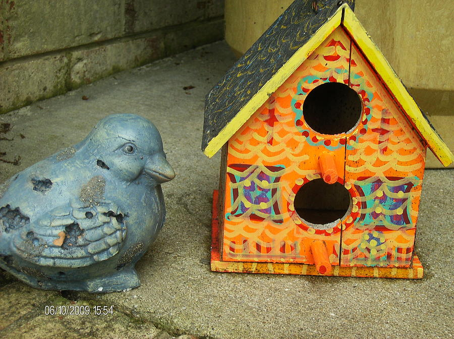 Birdhouse Photograph - Either This Birdhouse Is Too Small Or I Am Too Fluffy by Anne-Elizabeth Whiteway