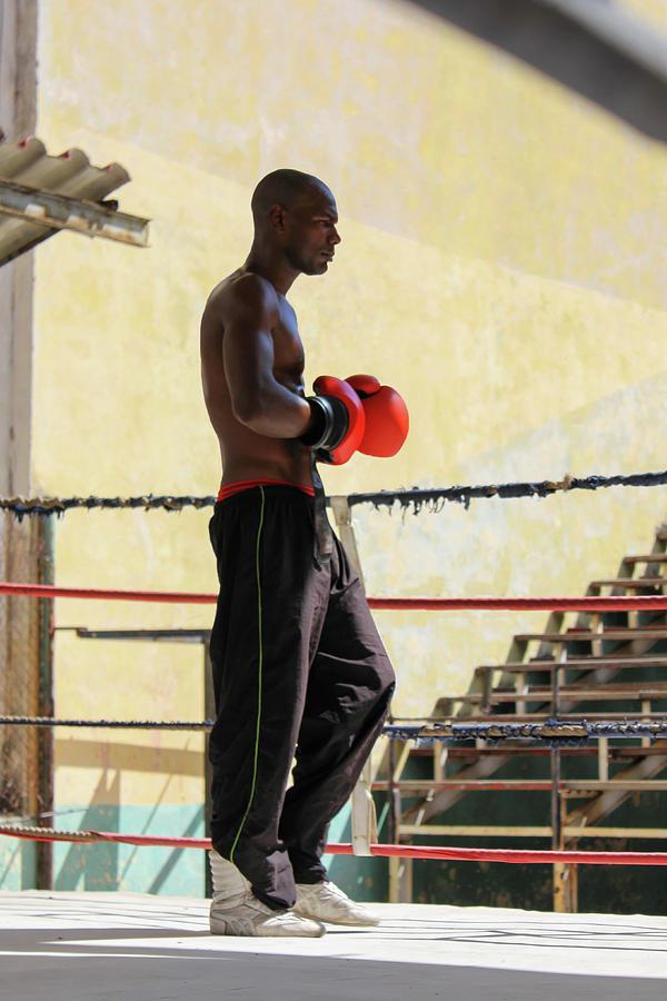 Athlete Photograph - El Boxeador by Dawn Currie